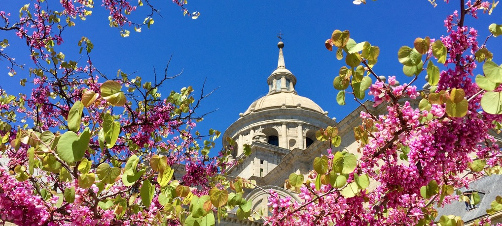 El Escorial – przepiękne miasto